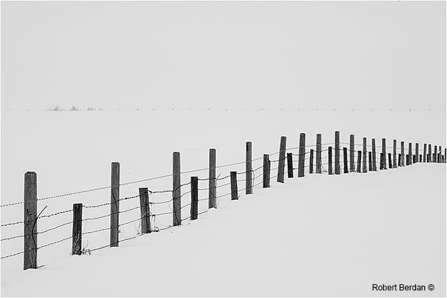 Fence in snow with two sizes of poles by Robert Berdan ©