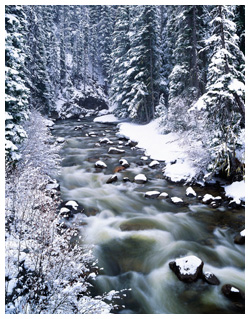 Creek in winter by Robert Berdan ©