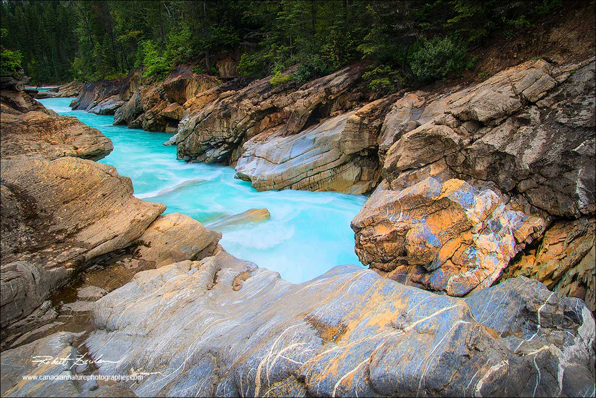 Blaeberry river and canyon by Robert Berdan ©